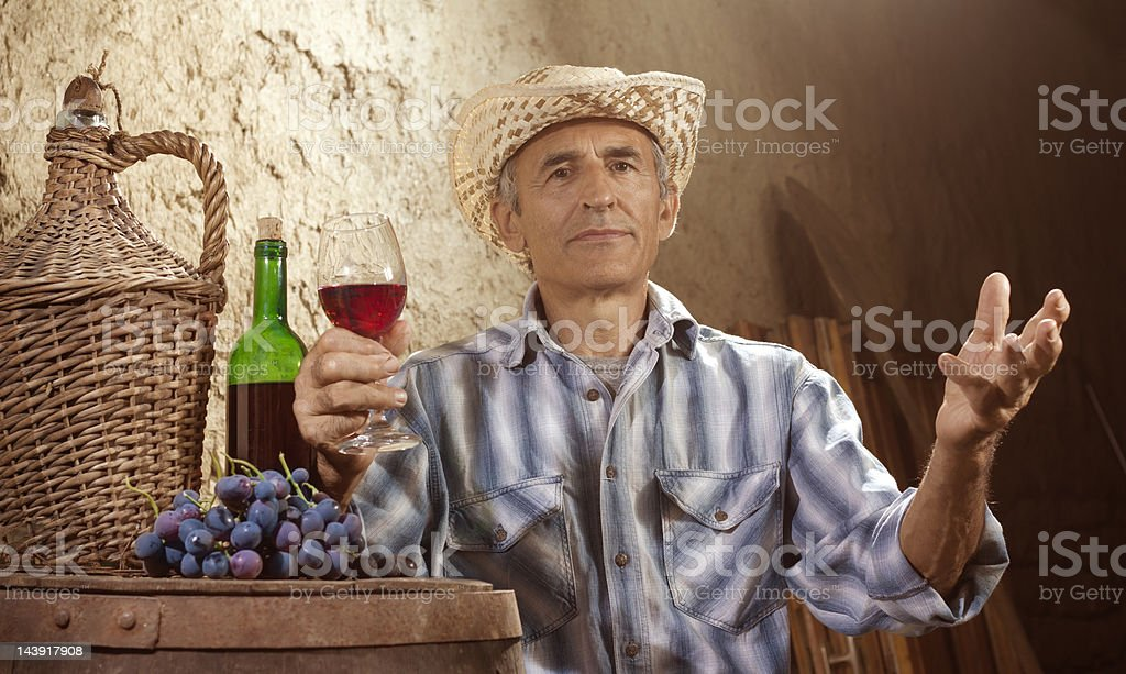 Man Tasting Wine royalty-free stock photo