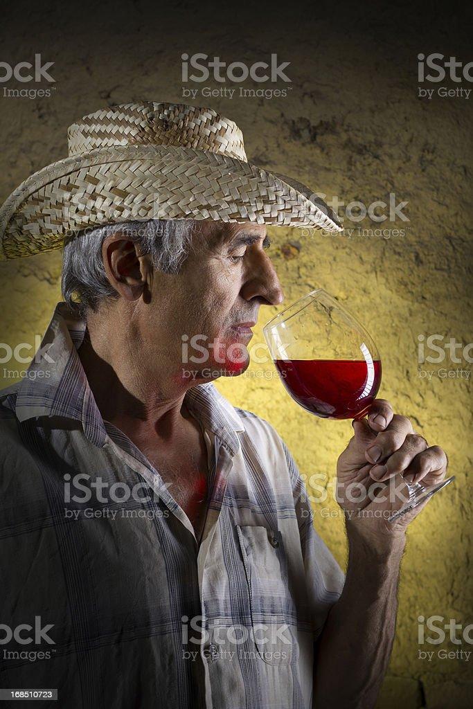Man Tasting Wine royalty-free stock photo