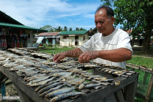 Quezon, Palawan Island, Philippines - November 11, 2008: Man laying out fish to dry.
