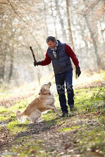 Man throwing stick for dog on walk through autumn woods picture id459074107?b=1&k=6&m=459074107&s=612x612&h=eipzwatm3fxkhzhjrz59bfku kvtcbfhmdseyzdp75e=