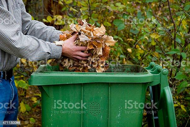Man tossing leaves into a green receptacle outside picture id471130099?b=1&k=6&m=471130099&s=612x612&h=fv1 xsp5hztiu8blmb6uh nskdktavpjmybti6rii1q=