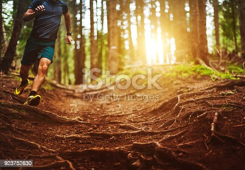 485902386istockphoto Man trail running in the forest 923752630