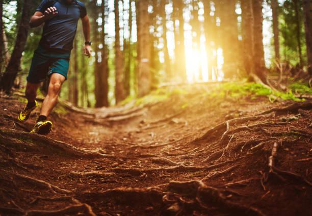 homem correndo trilha na floresta - estrada em terra batida - fotografias e filmes do acervo