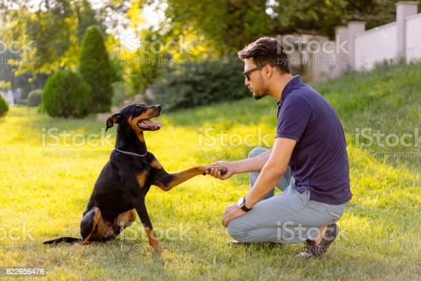 Man training a dog picture id822656476?b=1&k=6&m=822656476&s=612x612&h=nfan9otlnvdc9vhdoq7 eqbrlsl9ri33dywcwxqu9a0=