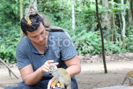 Man training a group of titi monkeys.