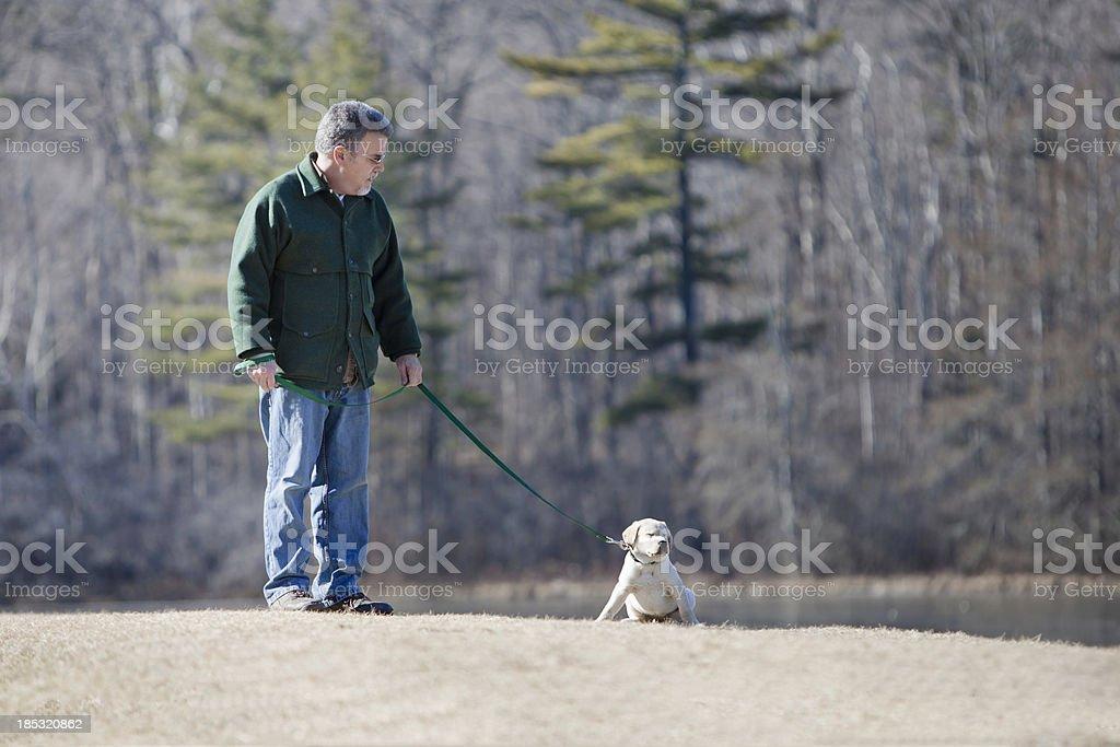 Man Training Puppy royalty-free stock photo
