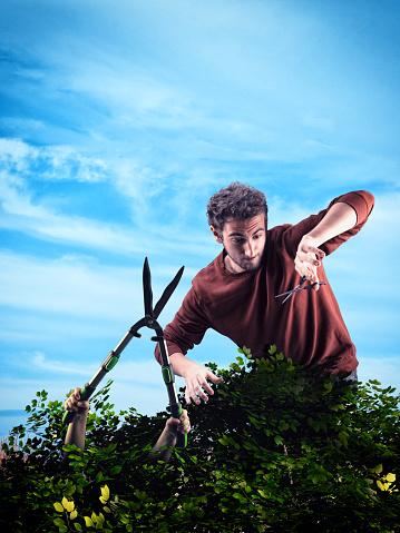 Man Trim A Bush With Scissors And A Trimmer Bush Gets Out