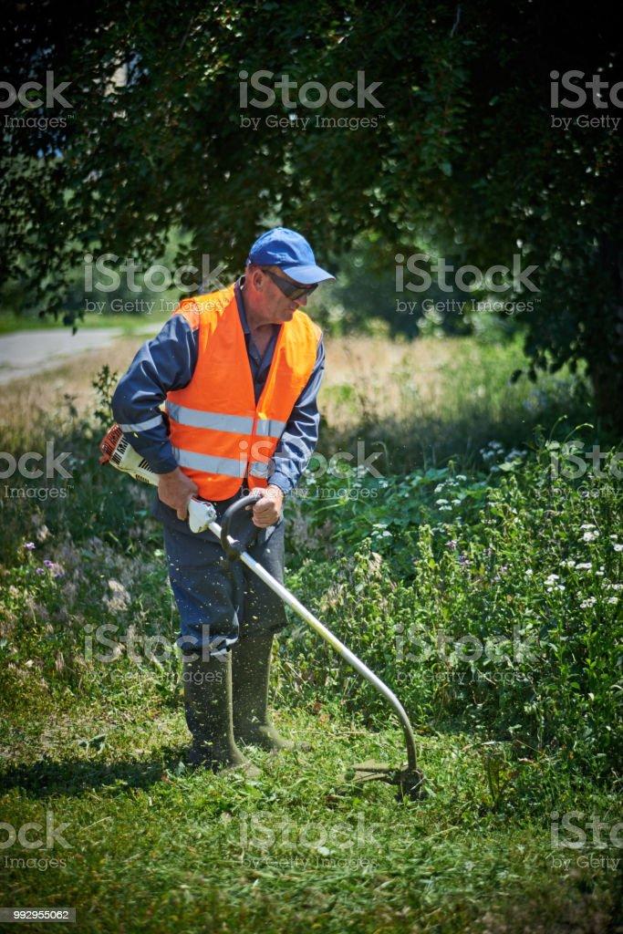 Man trimmt Grass in Sicherheits-Ausrüstung – Foto