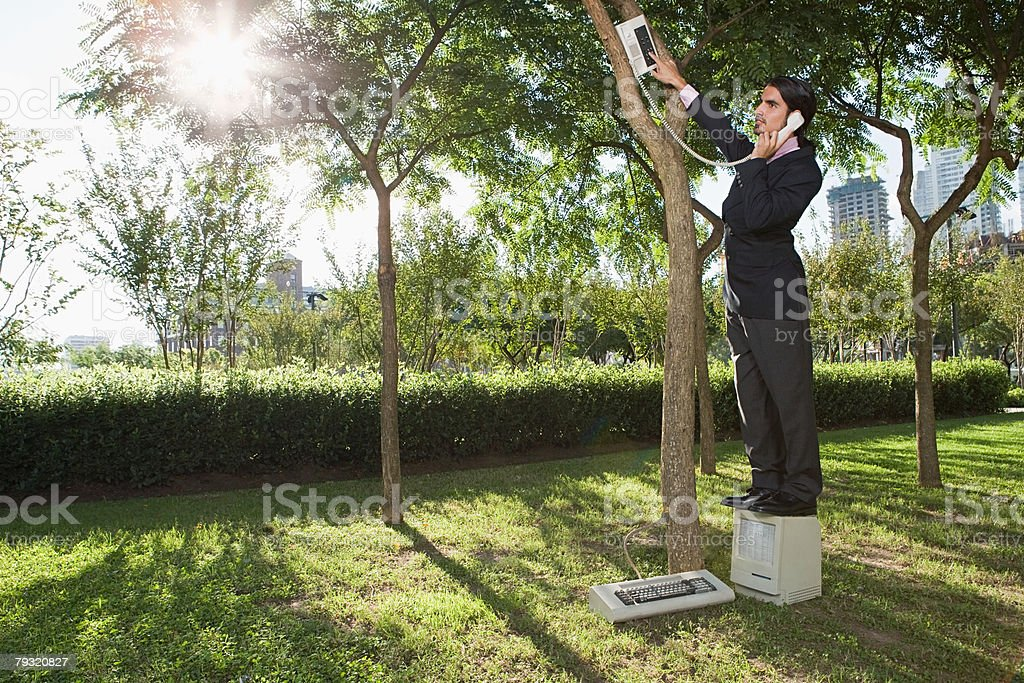Man using a telephone in a tree 免版稅 stock photo