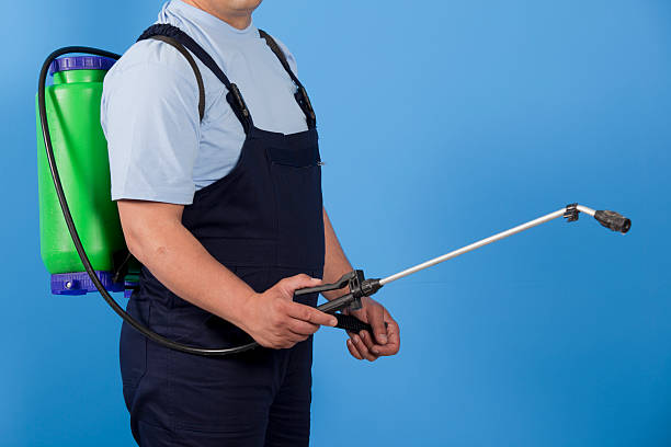 Man using pest control spray attached to back stock photo