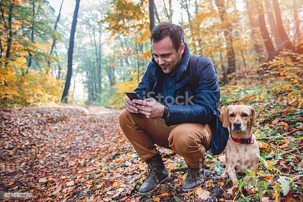 Photo of Man using phone in colorful autumn forest