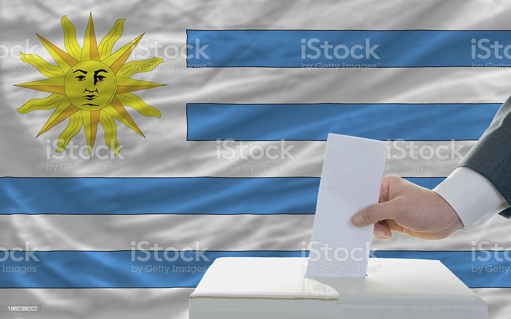 man voting on elections in uruguay front of flag stock photo