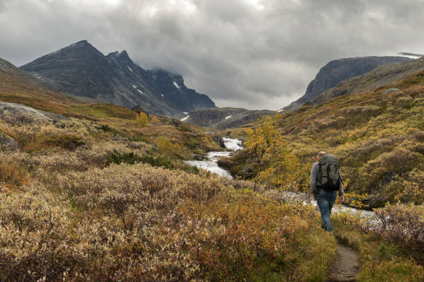 man walking alone beside river stream towards the mountains of hurrungane in jotunheimen, norway - wilderness stock pictures, royalty-free photos & images