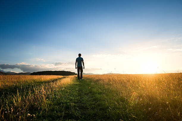 Man walking alone on a green meadow at sunset stock photo