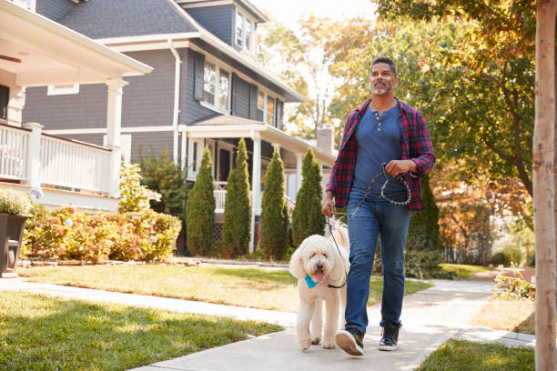 Man Walking Dog Along Suburban Street stock photo