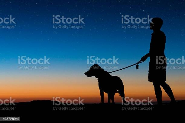 Man walking dog on a clear night picture id498728949?b=1&k=6&m=498728949&s=612x612&h=mibkwl ieehyw fhexnefu1overpp xfwjl1pw8qlcq=