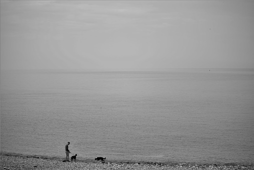 Man walking dogs at the beach