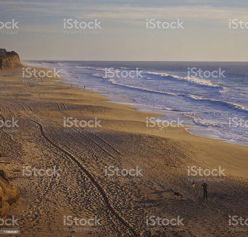 Man walking dogs on beach in Half Moon Bay, California stock photo