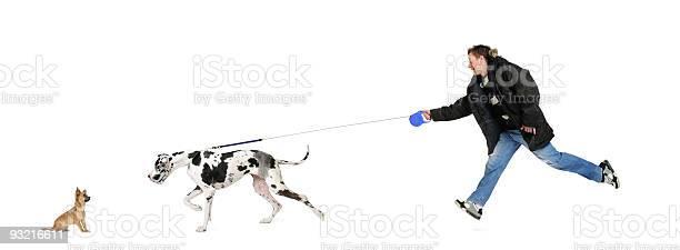 Man walking his dog picture id93216611?b=1&k=6&m=93216611&s=612x612&h=ffnz5wvuzjhns5zny2ouvgvsk ion4zbysygfz4xaxc=