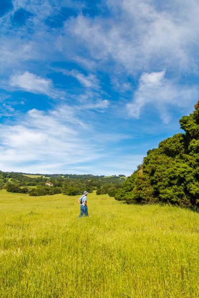 A man walking in a grassland stock photo