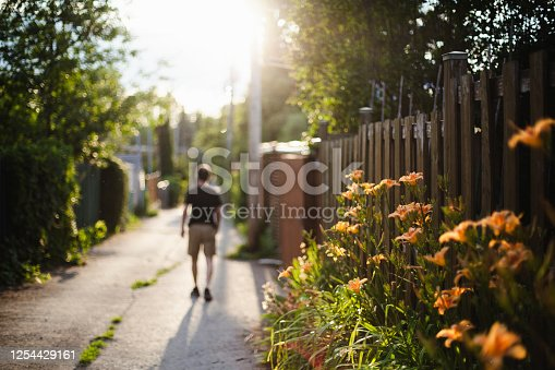 Montreal, adult, one man only, alley, flower