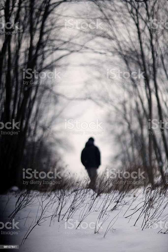 Man walking in snowy woods foto stock royalty-free