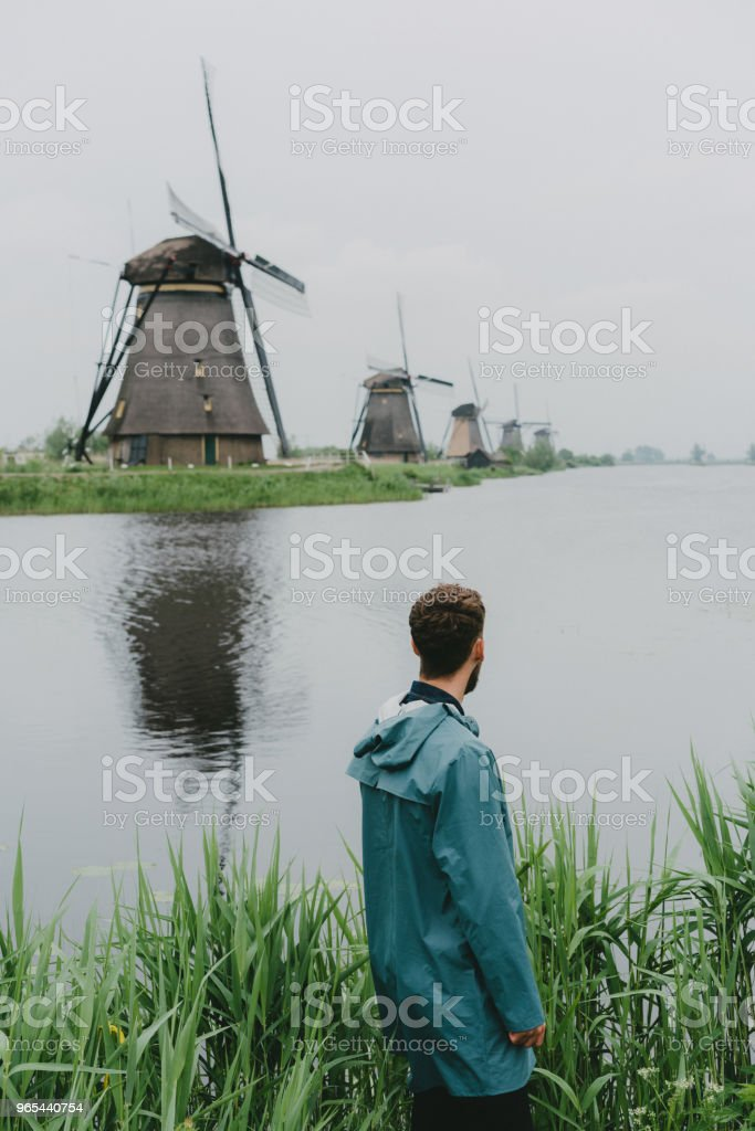 Man walking near windmills in the Netherlands royalty-free stock photo