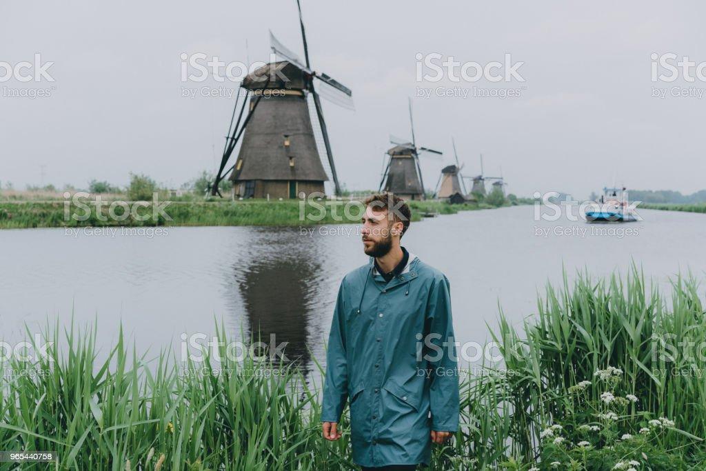 Man walking near windmills in the Netherlands royalty-free stock photo
