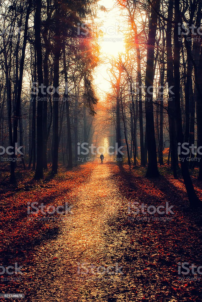 Man walking on a path stock photo