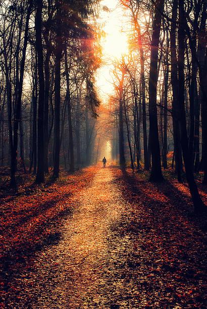 Homme marchant sur un sentier - Photo