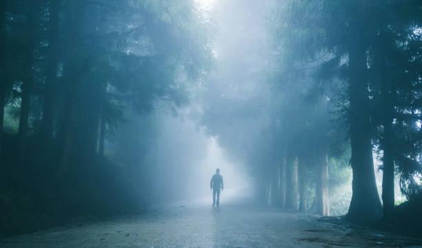 Mann zu Fuß auf nebligen Straße – Foto