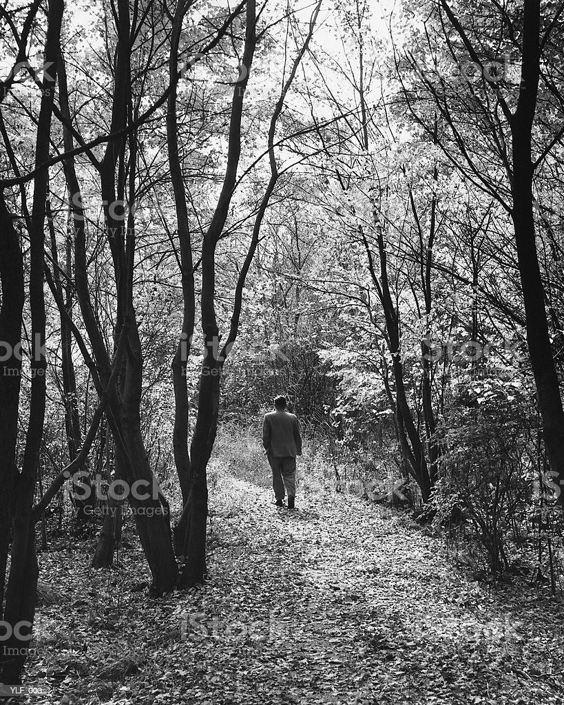Man walking on path in forest royalty-free stock photo
