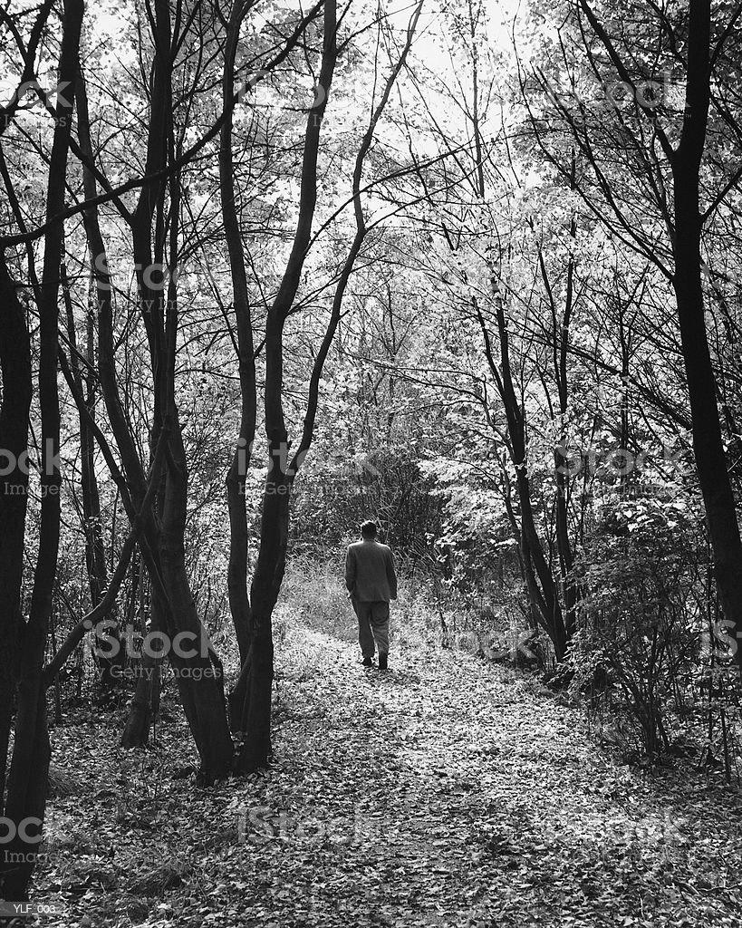 Homme marchant sur un sentier en forêt photo libre de droits