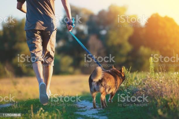 Man walking with a dog in the field at sunset the man holding the dog picture id1125048846?b=1&k=6&m=1125048846&s=612x612&h=i3ajtfg3yu g1yr4gqsme3oocyfazi3mqbz3nqyn0ca=