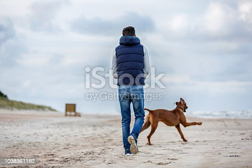 Man walking with a dog on the sea shore in the stormy weather. Baltic sea, Lithuania.