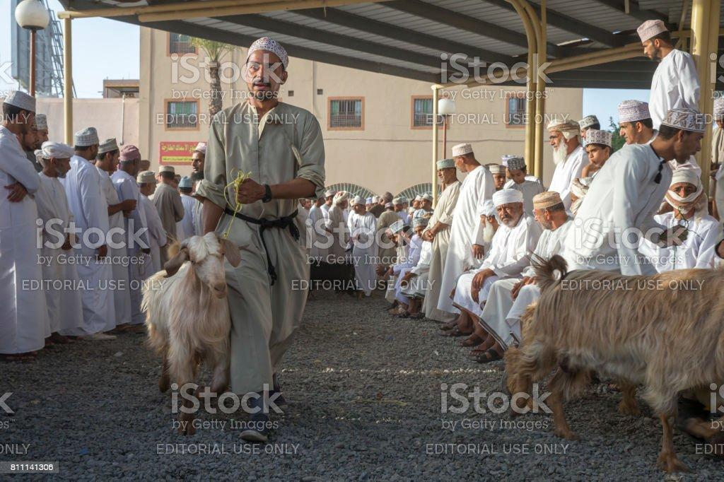 man walking with a goat at a Nizwa goat market stock photo