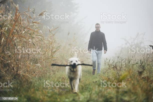 Photo of Man walking with dog in autumn fog.
