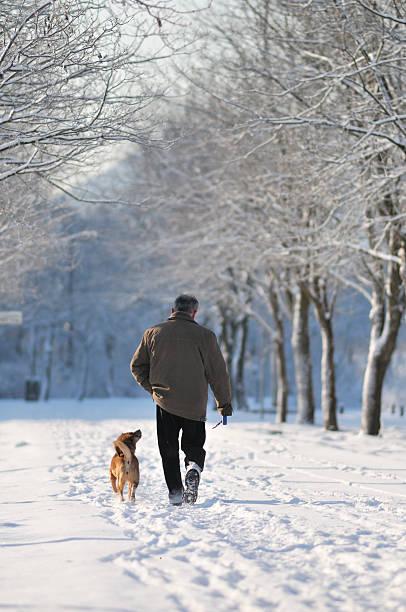 Man walking with dog in winter park picture id173631832?b=1&k=6&m=173631832&s=612x612&w=0&h=vhvap6eb43tqjeplasawjjuhfgm6qupesultc qmowq=