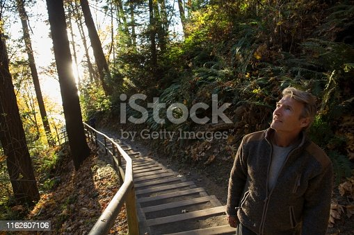 istock Man walks down steps through forest and into the sunlight 1162607106