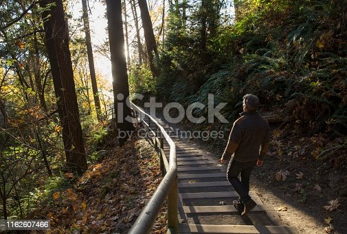 The sun is illuminating the steps and the man in the forest