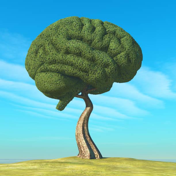 Man watering human brain shaped tree. 3d render stock photo