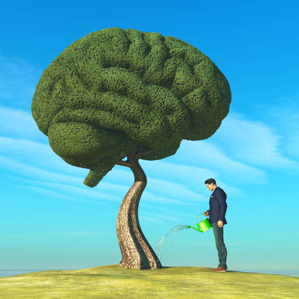 Man watering human brain shaped tree. Education concept. 3d render stock photo