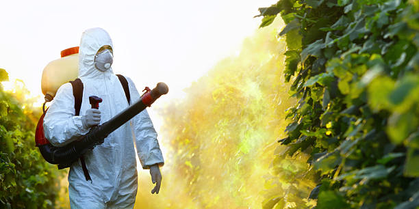 Man wearing white suit and protective mask spraying plants Young worker splash grape with fungicides crop sprayer stock pictures, royalty-free photos & images