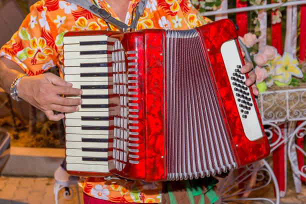Ein Mann trägt buntes Hemd und das rote Akkordeon, die Straßenmusiker spielt. – Foto
