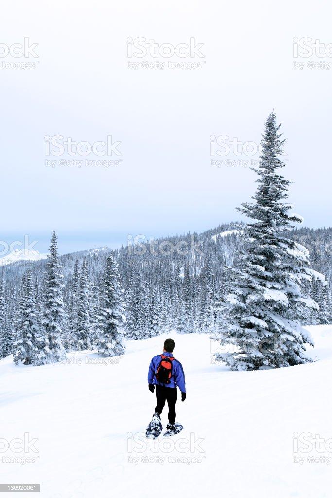 man winter hiking royalty-free stock photo