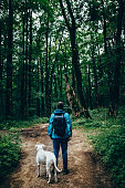istock Man with a dog in the forest 1031058950
