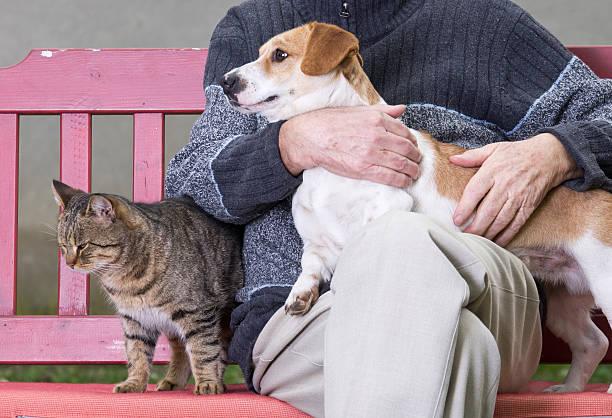 Man with a dog on his lap and a cat beside him picture id464090479?b=1&k=6&m=464090479&s=612x612&w=0&h=eqzveinbi0teiqkgiq2pk6qfehiqkndt9vjxzlpzgbo=