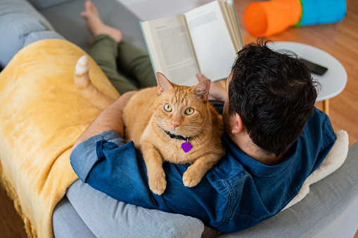 Man with a ginger cat at home