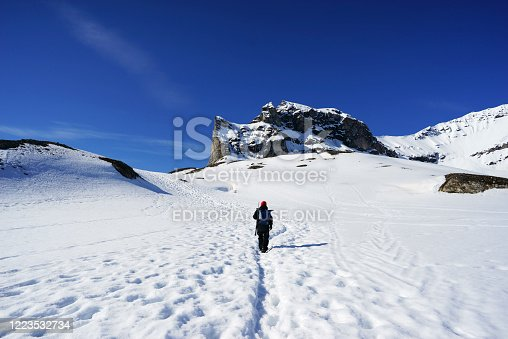 istock Man with a rifle and binoculars  on the arctic landscape at Svalbard 1223532734