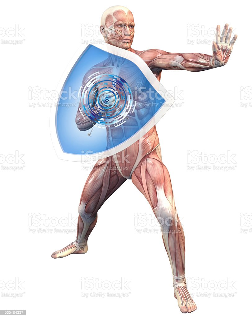 Man with a shield (anatomical vision) stock photo